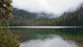 Niebla de la mañana sobre el lago limpio de la montaña rodeado por el bosque conífero imagenes de archivo