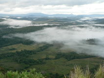 Niebla de la mañana sobre sabana Foto de archivo libre de regalías