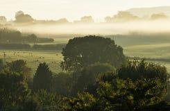 Niebla de la madrugada Imagen de archivo libre de regalías