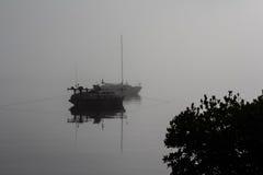 Niebla de la madrugada Fotos de archivo libres de regalías