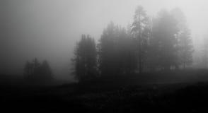 Niebla de la madrugada en el parque nacional de Yellowstone Fotografía de archivo libre de regalías