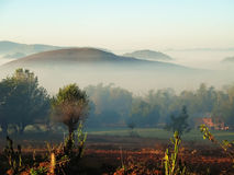 Niebla de la madrugada en las montañas de Myanmar Imagen de archivo