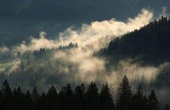 Niebla de la montaña Fotografía de archivo libre de regalías
