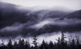 Niebla de la montaña Imágenes de archivo libres de regalías