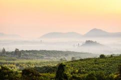 Niebla de la montaña de la mañana Imagen de archivo libre de regalías