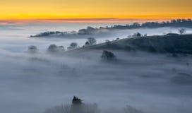 Niebla de la salida del sol Foto de archivo libre de regalías