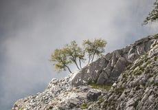 Niebla de levantamiento Foto de archivo
