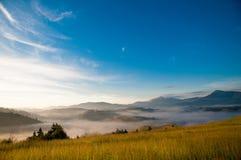 Niebla de Mistic en las montañas cárpatas Imagen de archivo libre de regalías