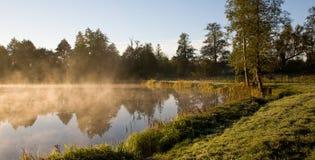Niebla de oro de la mañana sobre la charca Imagen de archivo