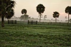 Niebla de Thisisnativeflo en el rancho Fotos de archivo libres de regalías