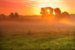 Niebla de tierra Imagenes de archivo