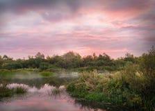 Niebla del amanecer del otoño por mañana nublada en el río Imágenes de archivo libres de regalías