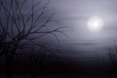 Niebla del claro de luna y fondo del árbol stock de ilustración