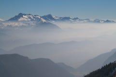 Niebla del invierno Imagen de archivo