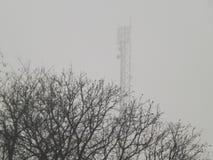 Niebla del invierno foto de archivo