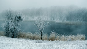 Niebla del invierno en el río fotos de archivo