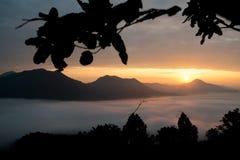Niebla del mar en la montaña Imágenes de archivo libres de regalías