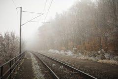 Niebla del misterio imagen de archivo libre de regalías