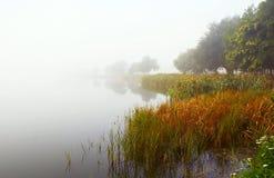 Niebla del otoño Imágenes de archivo libres de regalías