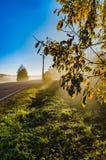 Niebla del otoño viva y colorida una mañana hermosa foto de archivo libre de regalías