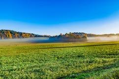 Niebla del otoño viva y colorida una mañana hermosa foto de archivo