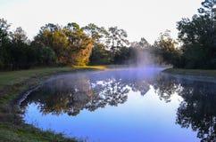 Niebla del pequeño lago y de la mañana Fotos de archivo