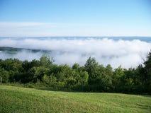 Niebla del valle Imagen de archivo