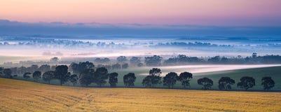 Niebla del valle Fotos de archivo libres de regalías