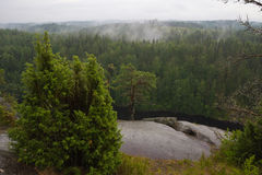 Niebla después de la lluvia Fotos de archivo