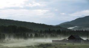 Niebla después de una lluvia Fotografía de archivo libre de regalías