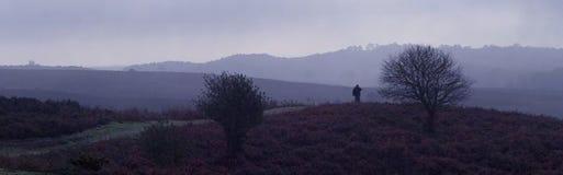 Niebla Dorset del tiempo de Ringwood Imagen de archivo libre de regalías