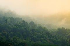 Niebla el tiempo de la sol Fotos de archivo