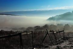 Niebla en campo Fotografía de archivo
