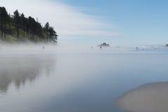 Niebla en Costa del Pacífico fotografía de archivo