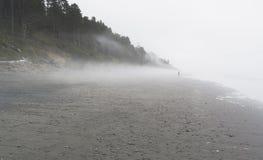 Niebla en Costa del Pacífico imagen de archivo