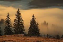 Niebla en el amanecer en las montañas Foto de archivo