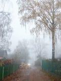 Niebla en el atrasado del otoño Fotografía de archivo libre de regalías