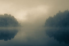 Niebla en el bosque de la mañana Imagen de archivo