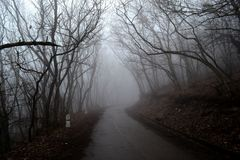Niebla en el camino Pyatigorsk, Rusia fotos de archivo libres de regalías