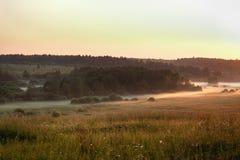 Niebla en el campo Imagen de archivo
