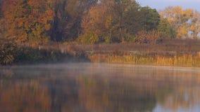 Niebla en el lago de la ma?ana almacen de metraje de vídeo