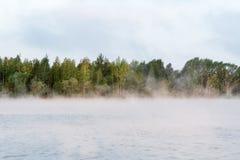 Niebla en el lago, tiro de la mañana de la salida del sol Foto de archivo