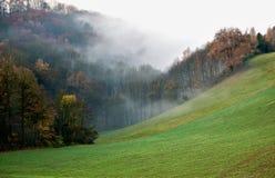 Niebla en el otoño Imagen de archivo libre de regalías