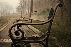 Niebla en el parque Imagen de archivo libre de regalías