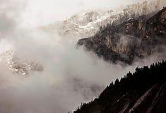 Niebla en el parque nacional de Yellowstone por una tarde del invierno imagen de archivo