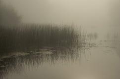 Niebla en el río Imágenes de archivo libres de regalías