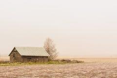 Niebla en Frost Fotos de archivo