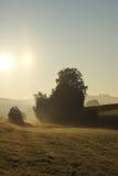 Niebla en gris de la mañana Imágenes de archivo libres de regalías