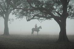 Niebla en Kolkata imagenes de archivo