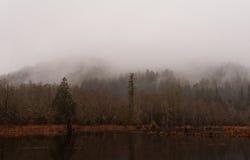 Niebla en la charca imagen de archivo libre de regalías